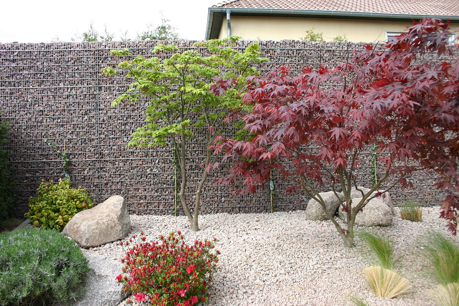 Mur Gabion Anti Bruit